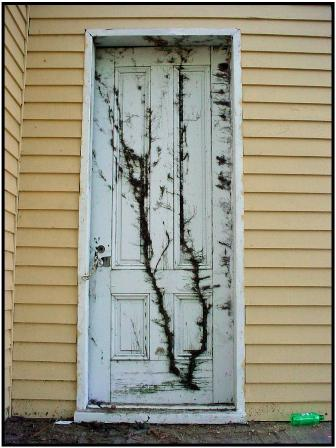 Exterior door showing years of weathering