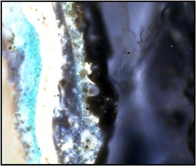 Microscopic analysis of historic paint layers and colors was conducted by Frank Welsh of Welsh Color and Conservation in Bryn Mawr, Pennsylvania